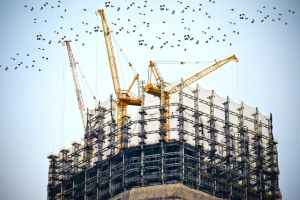Construction cranes atop a partially finished building with birds flocking in the air